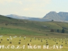 Kamberg area farm scenes .(1.) (3)
