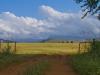 Kamberg - farm gate into hayfield (6)