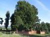 Karkloof - Barrington Farm Driveway (7).