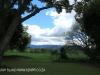 Karkloof - Barrington Farm - gardens (3)