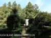 Benvie Main farmhouse (4)