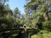 Benvie - gardens (13)