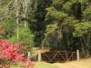 Benvie - gardens (51)