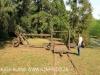 Benvie - sawmill (3)