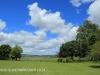 KARKLOOF - Colborne Farm  gardens (3).