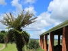 KARKLOOF - Colborne Farm verandas (8).