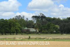 KARKLOOF - Shafton Grange - 676