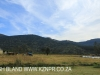 Shawswood farm paddocks (1)
