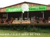 Karkloof canopy tours (2)