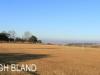 Kearsney College - Hopkins Field (2)