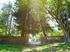 Sibton Hall -  (3)