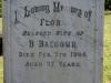 Kearsney Manor - Graveyard - grave - Flora Balcolm 1906
