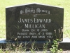 Kearsney Manor - Graveyard - grave - James Millican 1986