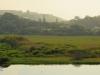 Winklespruit Caravan Park - Illovo river - S 30d 06.346 E 30d 51 (12)