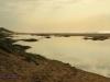 Winklespruit - East Glen Road - Illovo river estuary - S 30.06.404 E 30.51 (3)