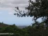 Kloof-Thomas-More-Sea-Views-191