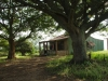 kranskop-old-green-house-s28-57-851-e30-52-081-elev-1135m-2
