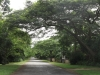 kwambonambe-residential-streets-1