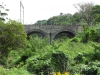 Tongaat  River  - Spruit - lower CBD Rail Bridge - S 29.33.994 E 31.07.020 E (4)