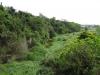 Verulam - Umhloti River -  (19)