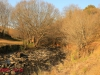 Caversham Mill - Lions Rivers Views and Mill gardens (7)