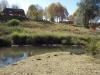 Caversham Mill -  Transport Riders Rivers crossing (6)
