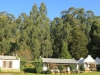 Cranford Country Lodge chalets in tree line (2)