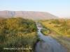 Mkuze River & road Bridge (6)