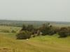 Mtunzini - Mlalazi River Views towards Mtunzini (10)