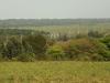 Mtunzini - Mlalazi River Views towards Mtunzini (12)