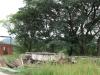 Ladysmith - Mbulwana Station -  (5)