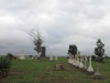 Ladysmith - Intombi Camp Cemetery - Graves - Multiple headstones (13)