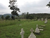 Ladysmith - Intombi Camp Cemetery - Graves - Multiple headstones (6)