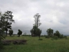 Ladysmith - Intombi Camp Cemetery - original part of cemetery -  (1)