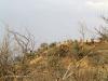 Platrand Wagon Hill - ILH fort (2)