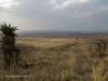 Platrand Wagon Hill gun emplacements (3)