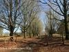 Lastingham - farm entrance) (4)