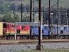lions-river-station-s-29-27-914-e30-09-265-elev-1055m-3