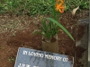 lydgeton-st-mathews-church-grave-jhw-bert-johnston-1