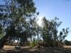 Lourdes Trappist Mission - Umzimkulu -  derelict service buildings (4)