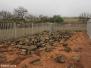 Intombi Battlefield - Fort Clery - Luneburg - Filter Larsen Monument