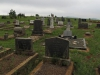 Louwsburg - Cemetery - Graves Vorster, Moller and Potgieter