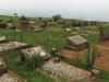 Louwsburg - Cemetery - Graves Webb