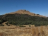 majuba-lower-south-western-slopes-10
