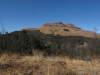 majuba-lower-south-western-slopes-8