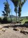 O'neils-cottage-family-graves-views-s27-30-01-e-29-51-25-40