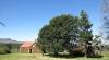 O'neils-cottage-outbuildings-s27-30-01-e-29-51-25-30