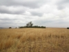 mt-prospect-farm-laings-nek-cemetary-from-west-view