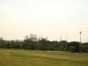 Mandini Sports Club - Rugby fields -  (4)