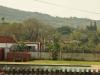 Mandini Sports Club - Swimming Pool -  (3)